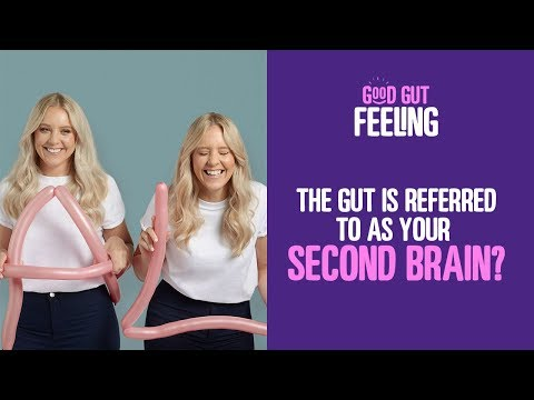 The gut is referred to as your second brain   Good Gut Health