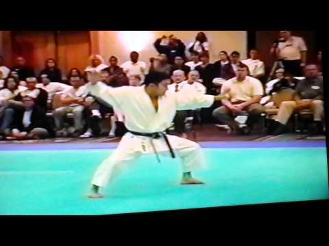 karate budokan international official training manual