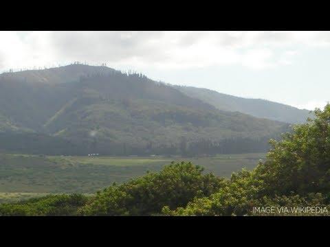 Billionaire Larry Ellison Buys Hawaiian Island For Estimated $500 million   Forbes
