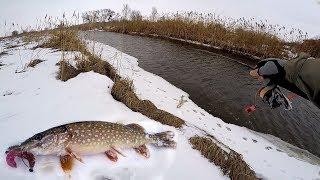 ВОДЫ НЕТ, А ЩУКИ ТЬМА! Рыбалка на щуку 2019! Ловля щуки на спиннинг на малой реке зимой