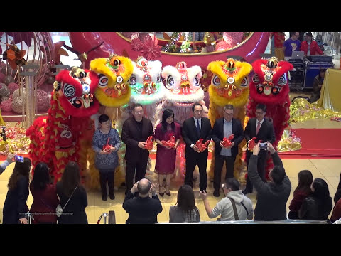 Hong Kong Chinese Lunar New Year 2017 - Lion Dance Performance @ City Plaza
