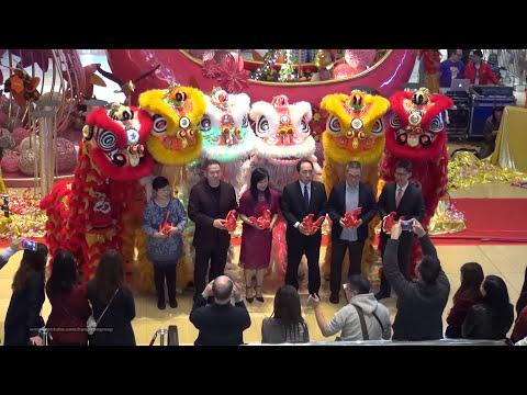 "Download 2017-Feb-2 香港農曆新年 - 郭氏功夫金龍醒獅團 ""醒獅表演"" HK Chinese New Year - Lion Dance Performance @ 太古城 City Plaza"