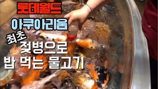 서울 제2롯데월드 아쿠아리움 몰아보기