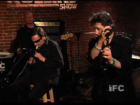 Shane MacGowan at the Henry Rollins Show 2008 performs Irish Rover.