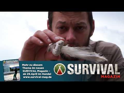 Wie Du mit Survivaltechniken Sepia im Meer fängst VRMag #1 (Doku)