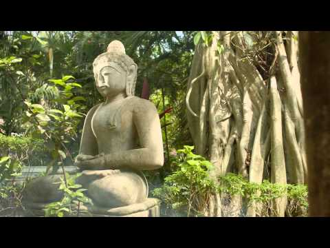 You Won't Want to Leave - A Short Film by Neemrana Hotels