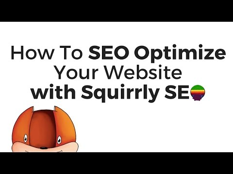 How To SEO Optimize Your Website with Squirrly SEO