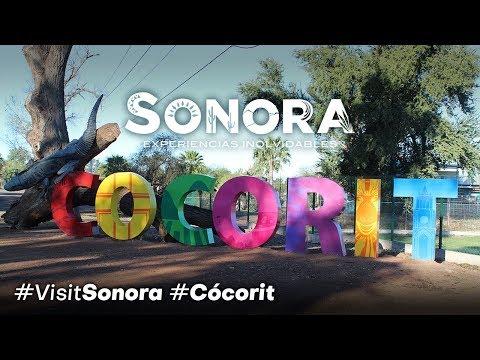¡Esto es CÓCORIT en Cajeme, Sonora! #VisitSonora #Sonora #ExperienciasInolvidables