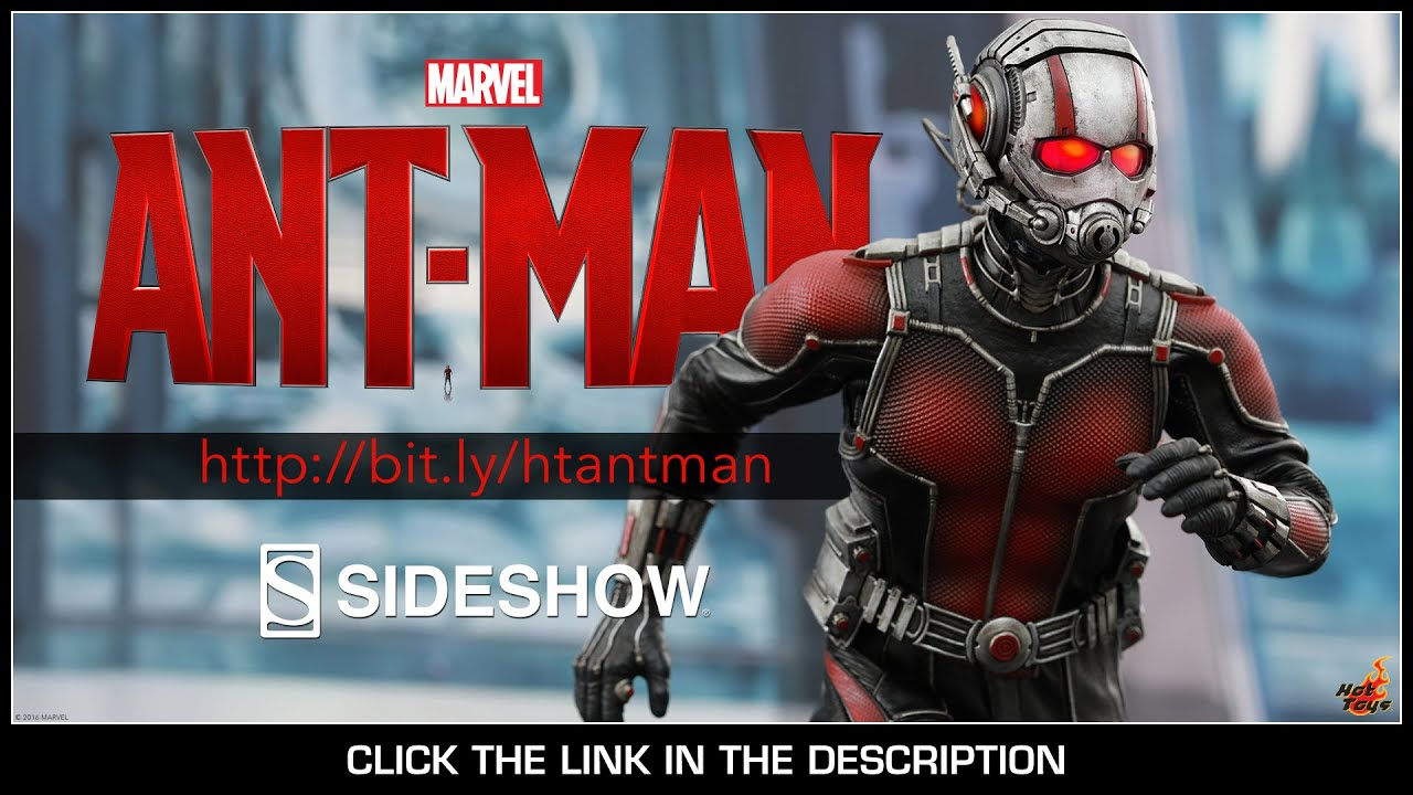 osw.zone Ant-Man Hot Toys Ant-Man Movie Masterpiece 1/6 Scale Collectible Figure Review B...