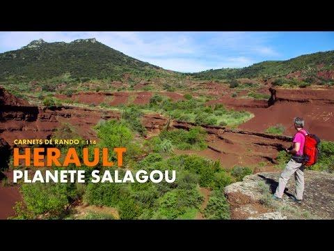 Randonnée Hérault : Planète Salagou [Carnets de Rando #114]