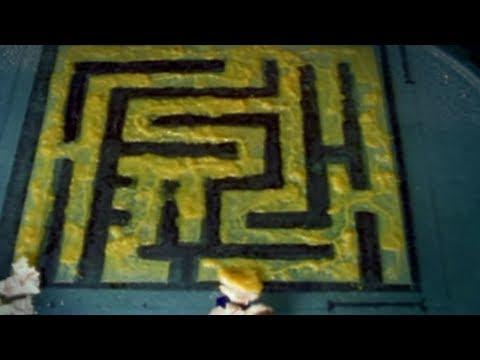 Can Slime Mould Solve Mazes? | Earth Lab