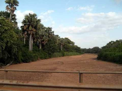 southern sudan landscape and wildlife