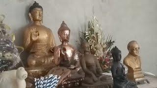 बौद्ध धम्म बंधुओ की प्रतिकिया धम्म उत्सव के सम्बन्ध में