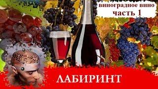 Рецепт приготовления виноградного вина в домашних условиях  из Лидии 🍇 ТАКОГО ВЫ ещё не видели.