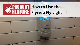 Fly Web Fly Light - Indoor Electric Bug Light