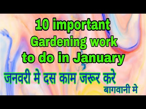 191 10 Important work of gardening to do in January(Hindi/Urdu)
