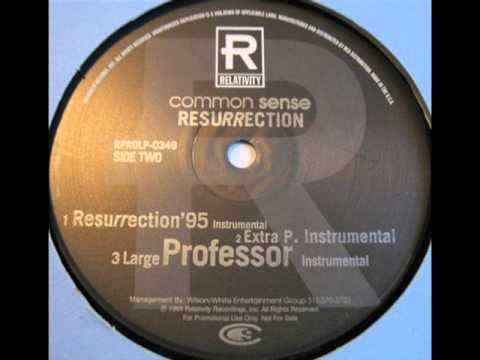 Common Sense - Resurrection (Extra P Remix) (Instrumental)