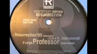 Common Sense - Resurrection (Extra P Remix) (Instrumental)