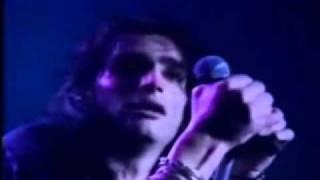"""Banda japonesa formada en 1981, la canción """"Never Again"""" pertenece ..."""