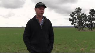 Over the Fence Revisited: Long term seeding trials pay off for Michael Pfitzner