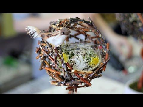 Оригинальные топиарии Птичьи гнезда. Обсуждение на