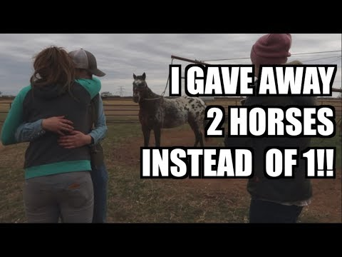I GAVE AWAY 2 HORSES INSTEAD OF 1!