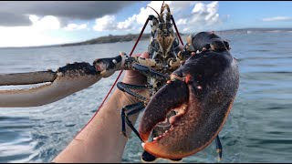 Bass Fishing and Hauling Lobster Pots - Sea Fishing Cornwall