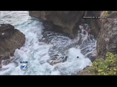 Swimmers caught on video struggling in rough waters off Laie Point