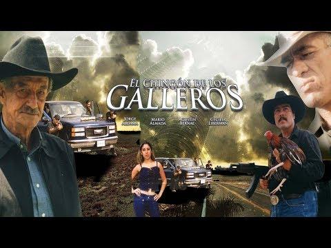El Chingon de los Galleros | MOOVIMEX powered by Pongalo