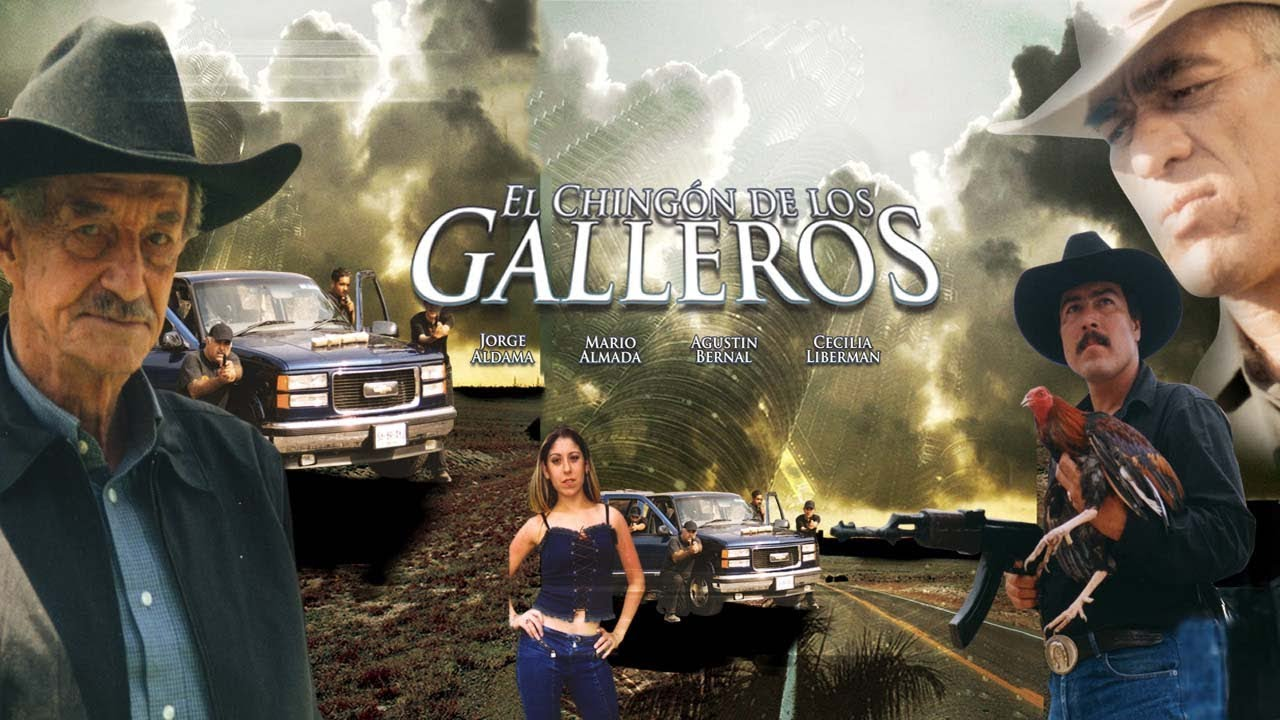 El Chingon De Los Galleros Moovimex Powered By Pongalo Youtube