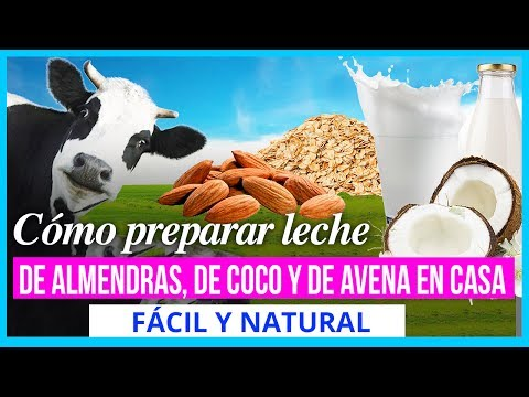 Cómo preparar leche de almendras, de coco y de avena en casa - Fácil y natural