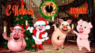 С Новым годом 2019! Вас поздравляют Свинки!