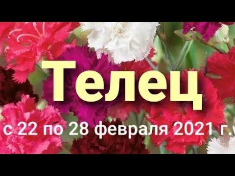 Телец Таро-гороскоп с 22 по 28 февраля 2021 г.