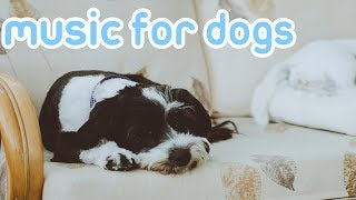 Relaxing Music for Dogs! Deep Sleep Songs to Calm Dogs! NEW!