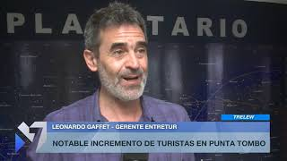 Notable incremento de turistas en Punta Tombo