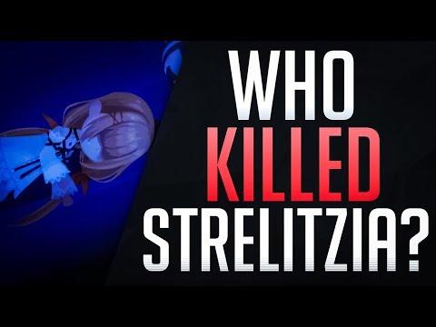 Who KILLED STRELITZIA?! Kingdom Hearts Union X The Person of Interest - Discussion
