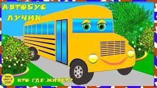 Автобус Лучик – кто где живет? Развивающие мультики про машинки для детей
