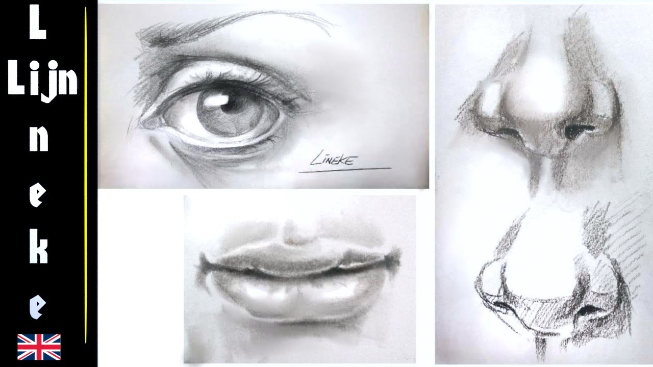 Drawing the Realistic EYE, NOSE and MOUTH step by step for ...