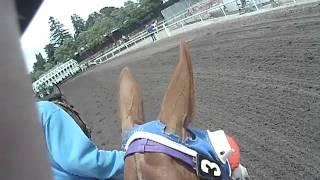 Best pony girl