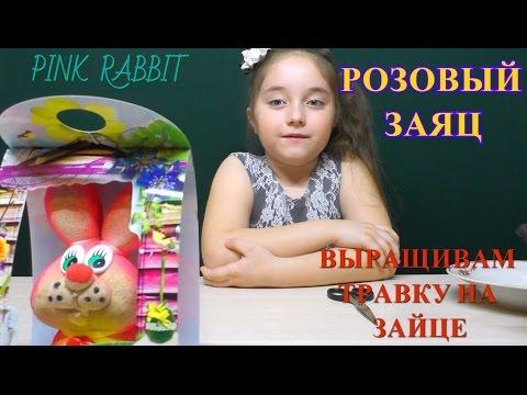Мультфильм « Губка Боб / Спанч Боб (1-11 сезон / все серии