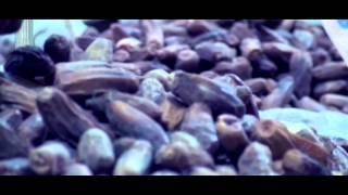 فيديو| زيزي عادل تفاجئ جمهورها بأغنية «رمضان»