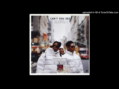 Total Feat. The Notorious BIG - Can't You See