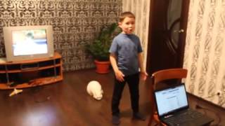 Even Russian Cats Hate Russian Music [ Funny 2015 ]