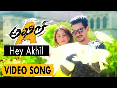 Akhil Video Songs || Hey Akhil Video Song...