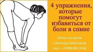 4 упражнения, которые помогут избавиться от боли в спине