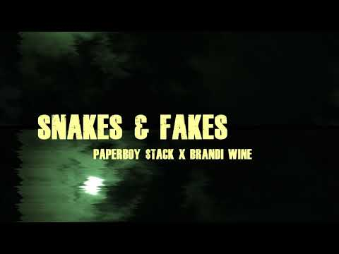 Paperboy $tack Snakes & Fakes ft. Brandi Wine (Official Music Video)