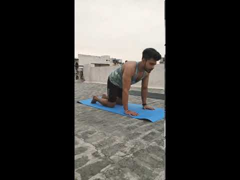How to do a Cat Cow Pose (Chakravakasana) | Yoga