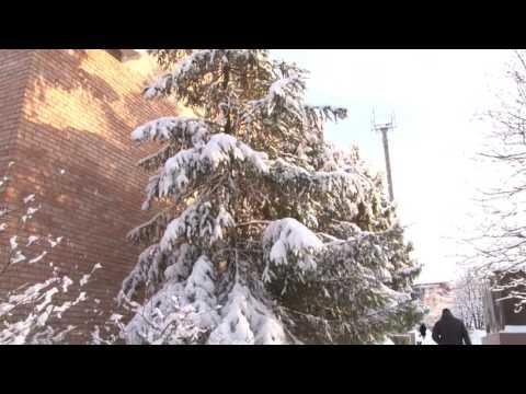 Погода в Рязани на Новый год