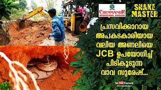 Vava Suresh catches dangerous but heavily pregnant Russell's viper using JCB | Snakemaster EP 455
