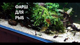 Фарш для аквариумных рыб на заметку новичкам. Плюсы и минусы